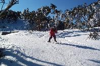 Lawrie skiing at Mt Baw Baw
